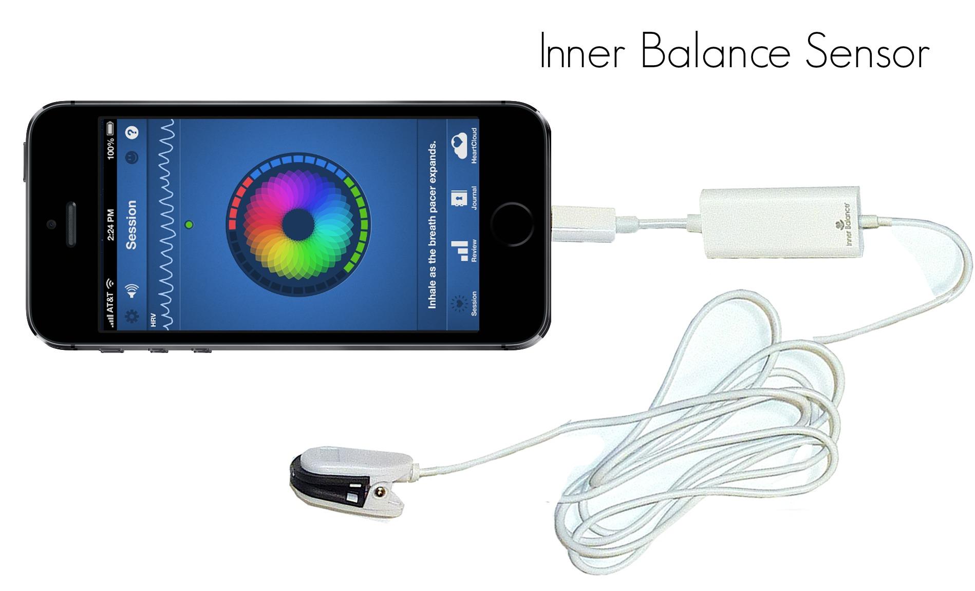 IB sensor